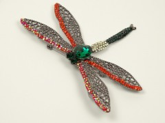 Brosa libelula multicolora